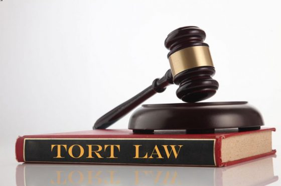 What Is Tort Law?